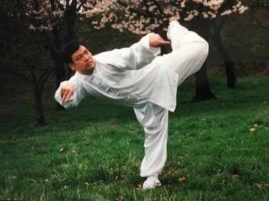 Yang, Fukui